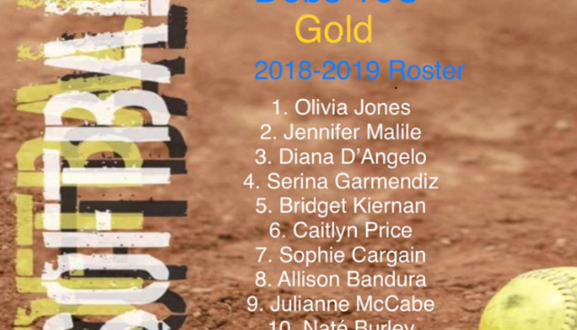 Congratulations to Debs Gold 16U 2018-2019 Roster